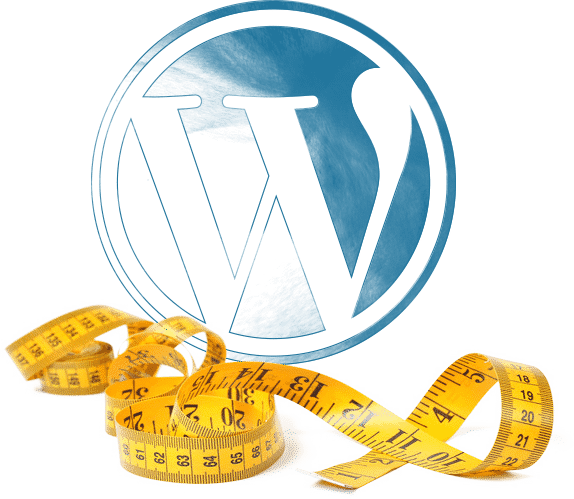 Wordpress website logo met meetlint